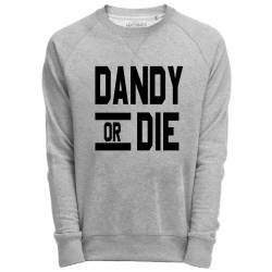 Sweat Shirt Gris imprimé typographie dandy or die
